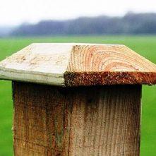 Timber-Wooden-Post-Caps-Dorchester-Dorset