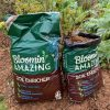 Bloomin Amazing Soil Enricher